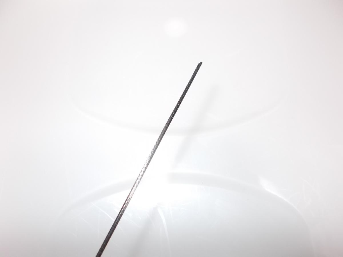 f:id:sizyuukara-1979:20210511175859j:plain