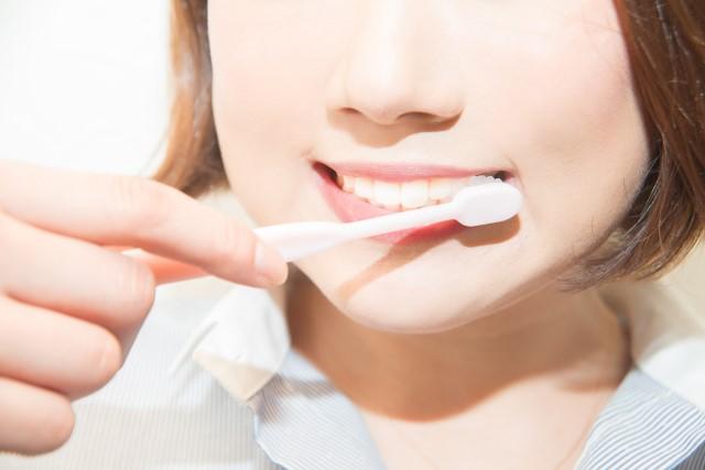 適度なマッサージ感で歯茎ケアばっちり|歯周病対策に!