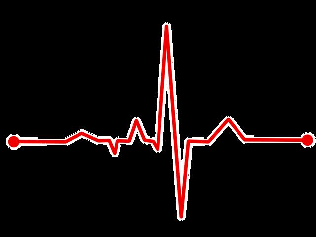 交互浴における心拍数データ公開