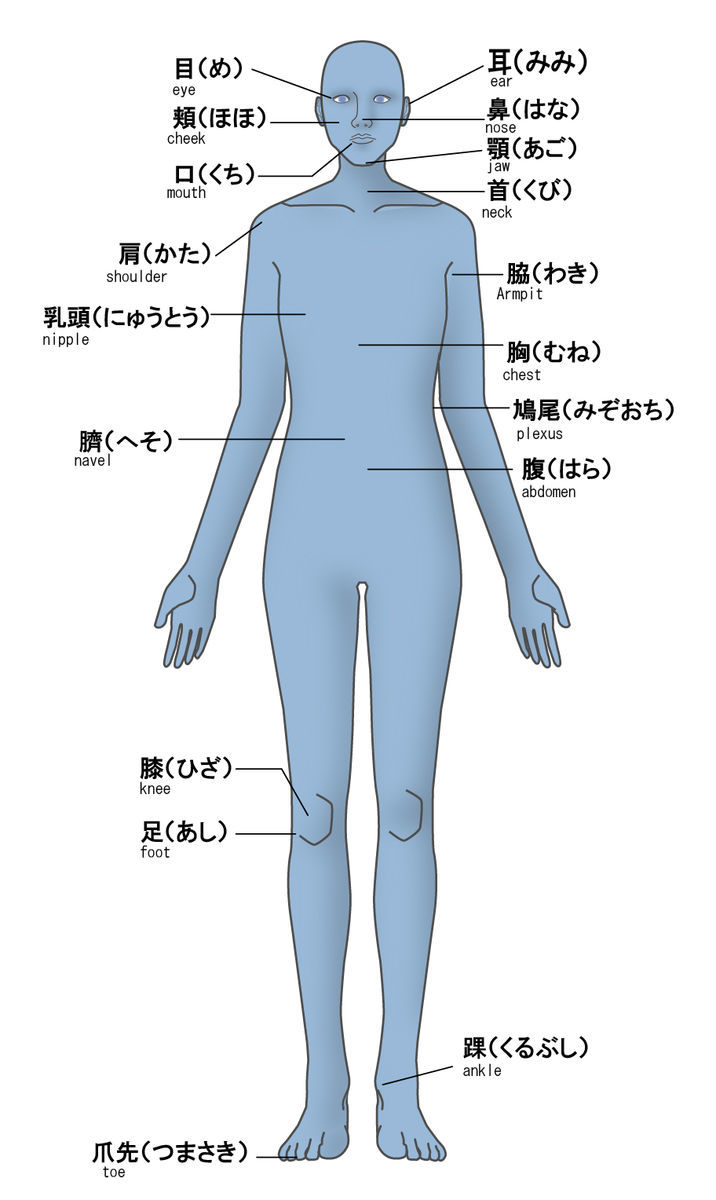 夏の交互浴のコツ①|冷却する身体のの部位に着目