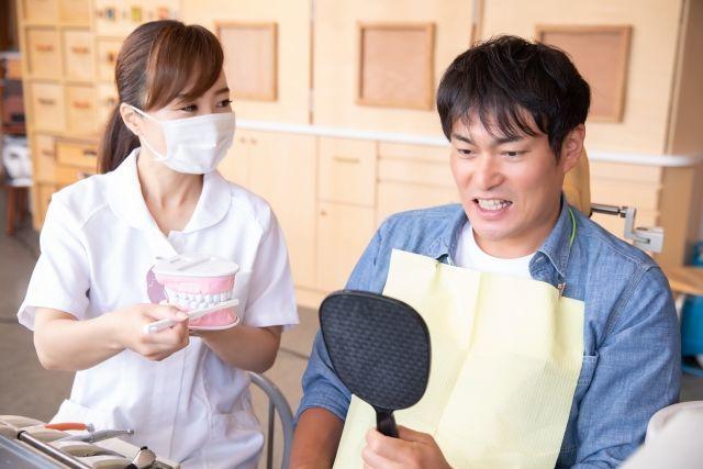 歯科医推奨の意味がわかる