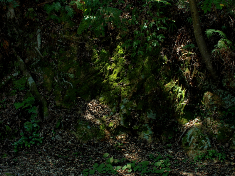 f:id:skaba:20100829151624j:image