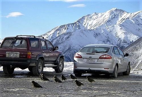f:id:skijodel:20110728085724j:plain