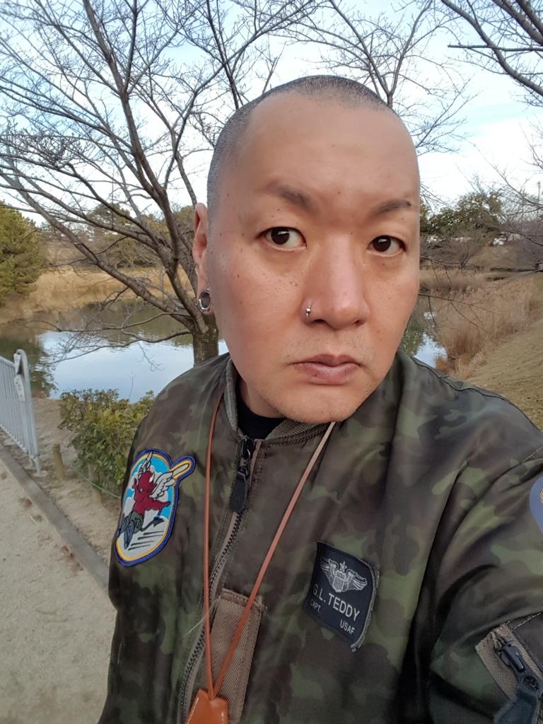 f:id:skinheadshuji:20170107154155j:plain