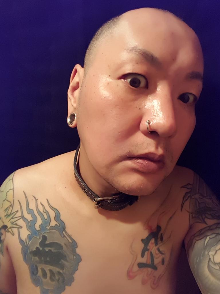 f:id:skinheadshuji:20170108154259j:plain