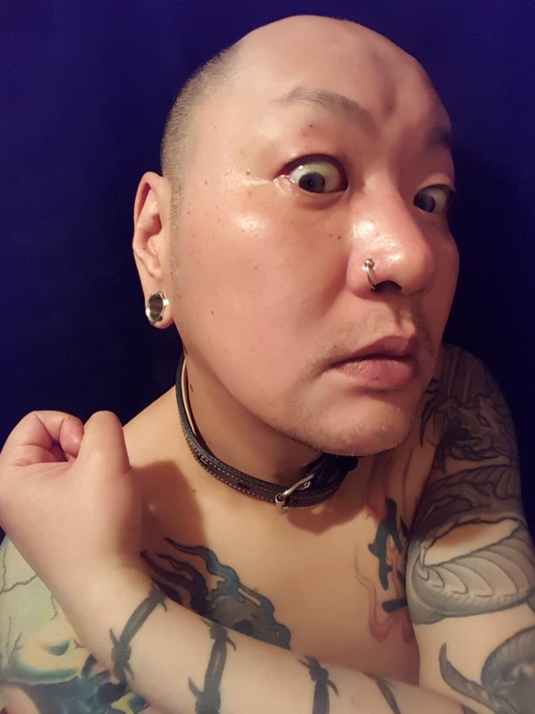f:id:skinheadshuji:20170109194405j:plain