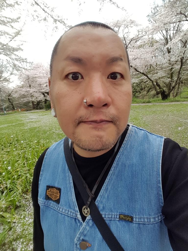 f:id:skinheadshuji:20170409134839j:plain