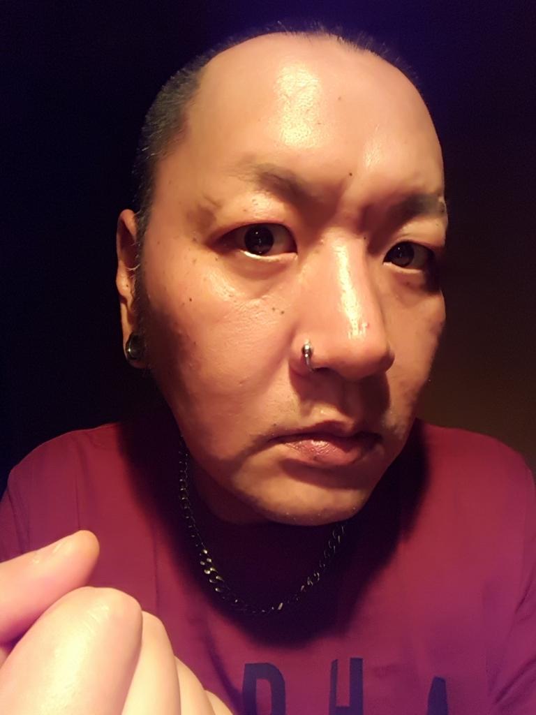 f:id:skinheadshuji:20170602221209j:plain