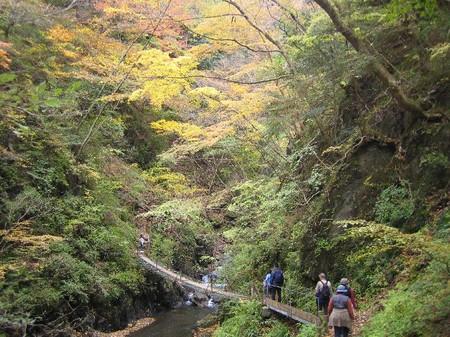 つり橋・安倍大滝(静岡県静岡市)