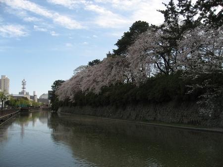 駿府公園 (静岡県静岡市葵区)