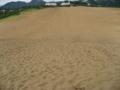 鳥取砂丘 (鳥取県鳥取市)