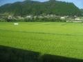 どこだろ?多分、鳥取県