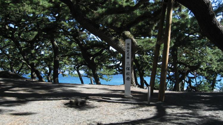 三保の松原 (静岡県静岡市清水区)
