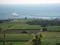 入港する船  (小浜島)