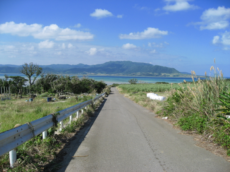 本集落からちゅらさん展望台へ向かう道 (小浜島)
