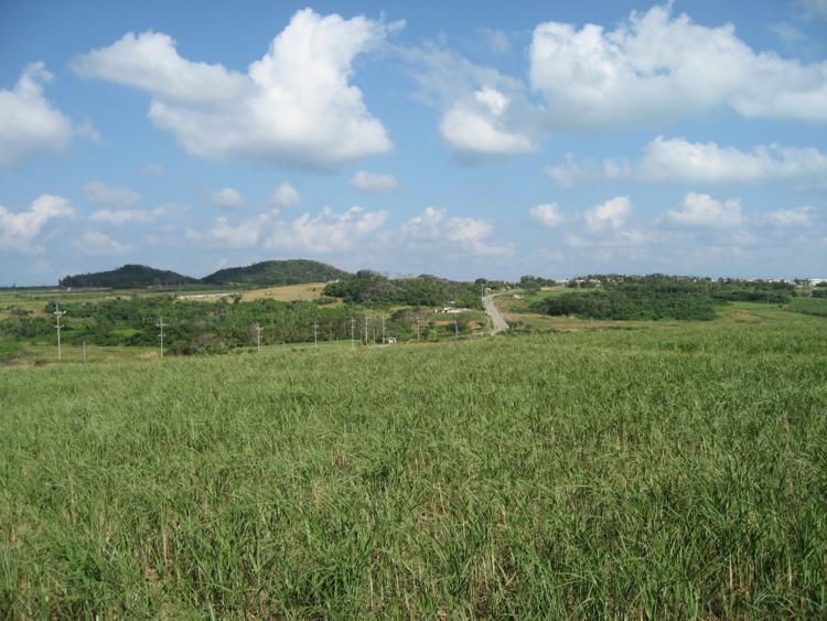 細崎周辺  (小浜島)