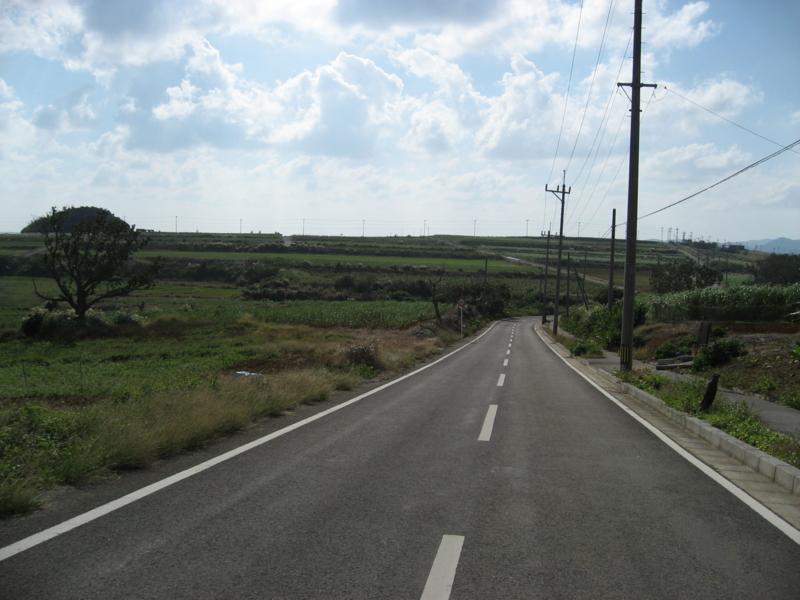 細崎へ向かう道路  (小浜島)