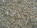 カイジ浜の砂  (竹富島)