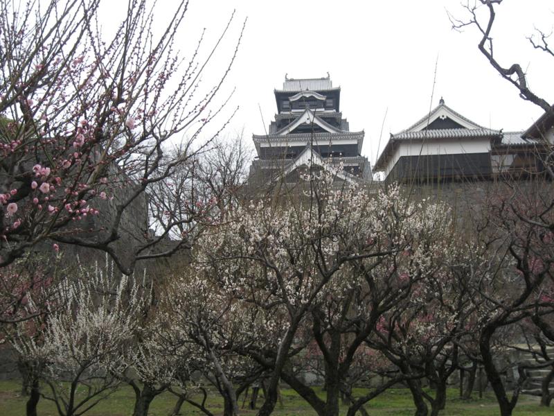 熊本城 (熊本県熊本市)