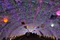 時之栖イルミネーション2010-2011 (静岡県御殿場市)
