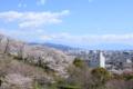 船越堤公園からの富士山(静岡県静岡市)