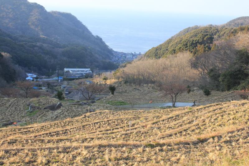 石部の棚田(静岡県松崎町)