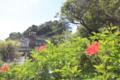 石廊崎(静岡県南伊豆町)