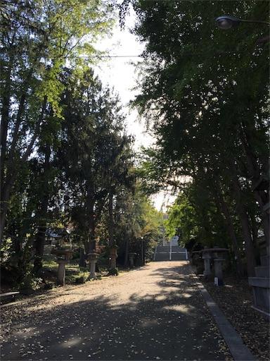f:id:skohaku:20171014202952j:image