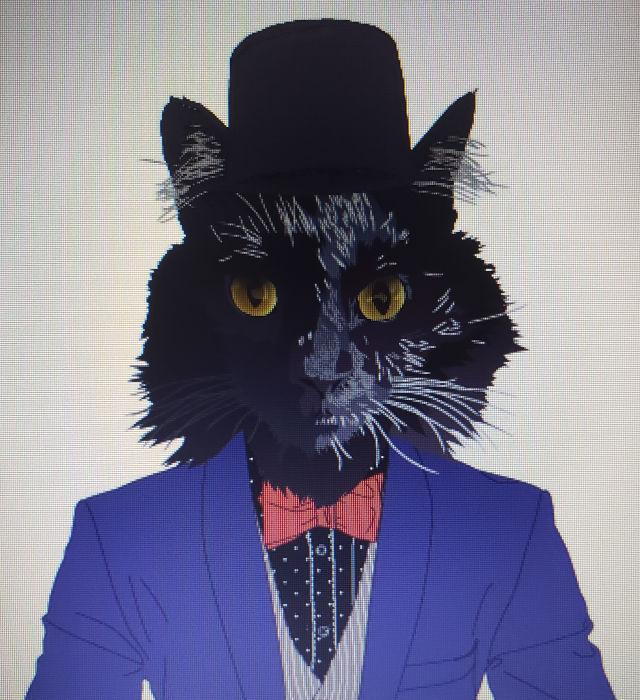 原色系が似合う猫