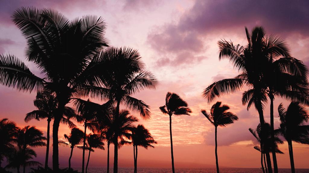 ハワイ 特典航空券ビジネスクラス