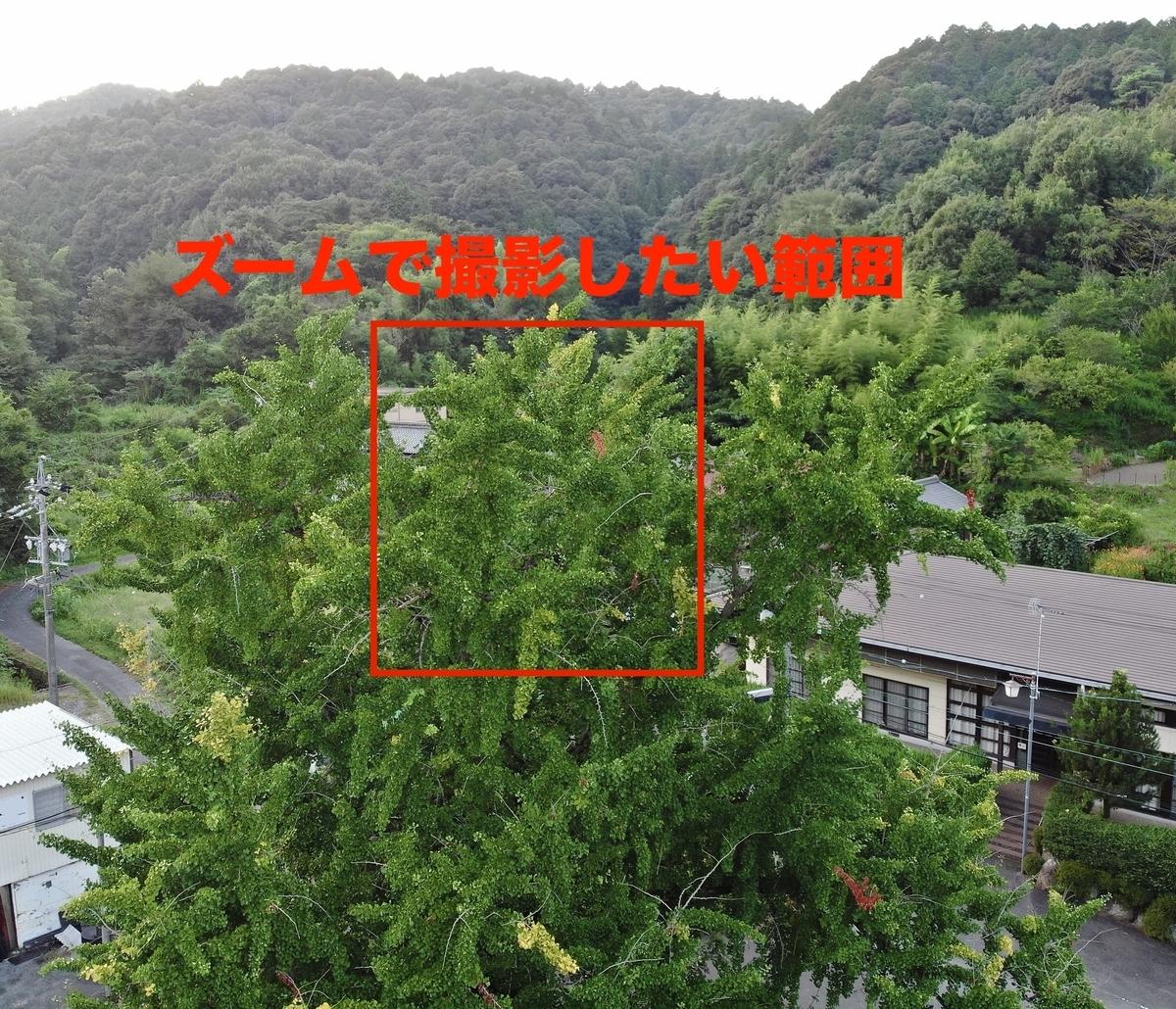 f:id:skyeye-japan:20201020192656j:plain
