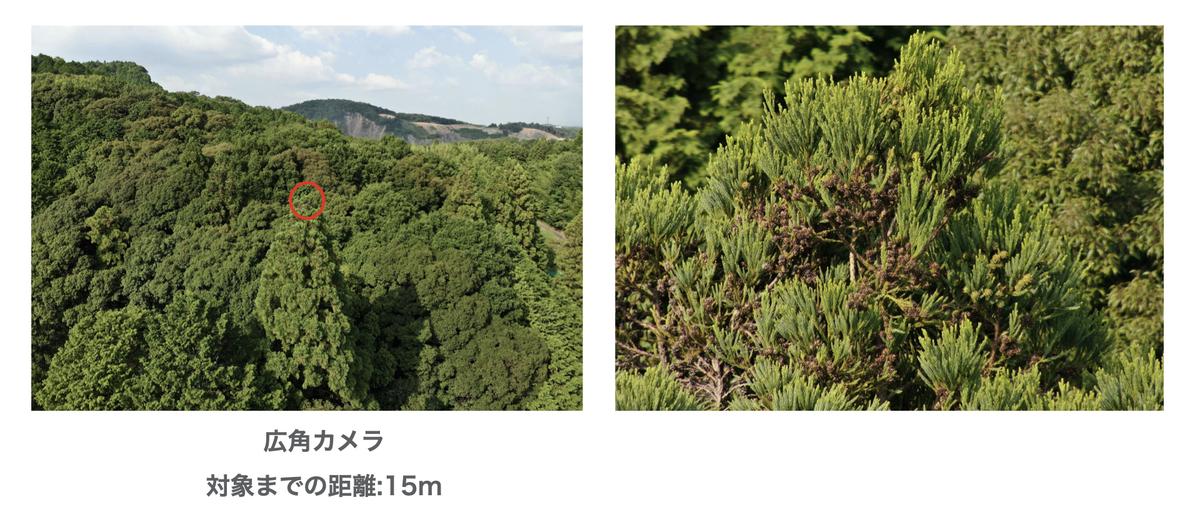 f:id:skyeye-japan:20201025184658j:plain