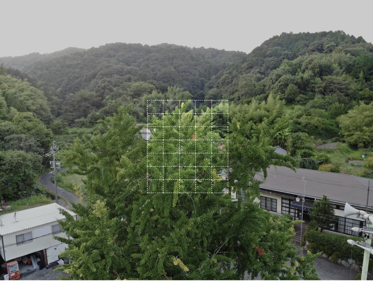 f:id:skyeye-japan:20201127002556p:plain
