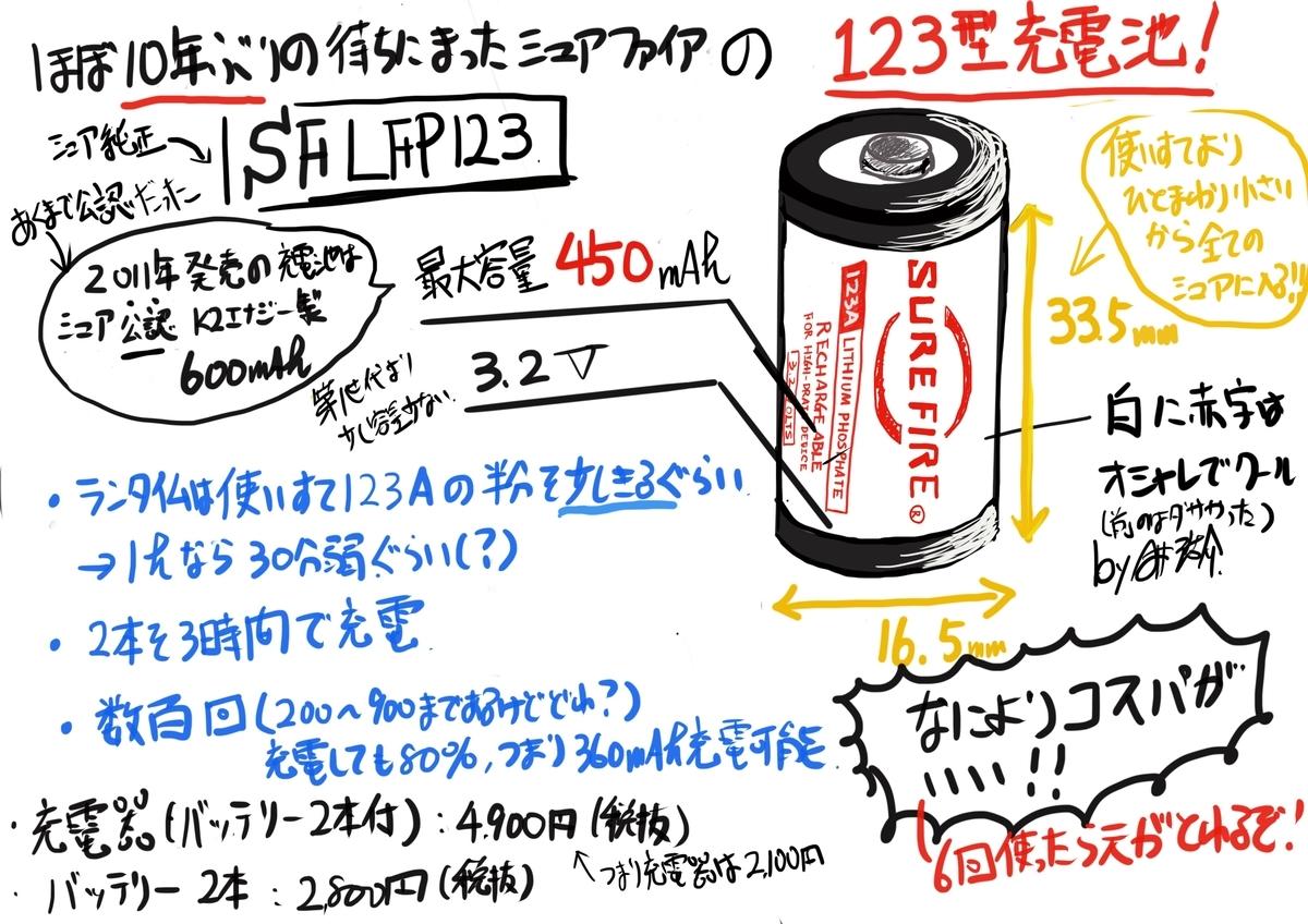 f:id:skyeye-japan:20210224180053j:plain