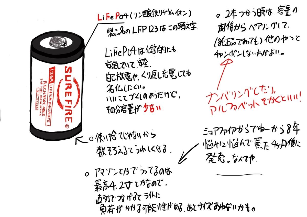 f:id:skyeye-japan:20210224181852j:plain