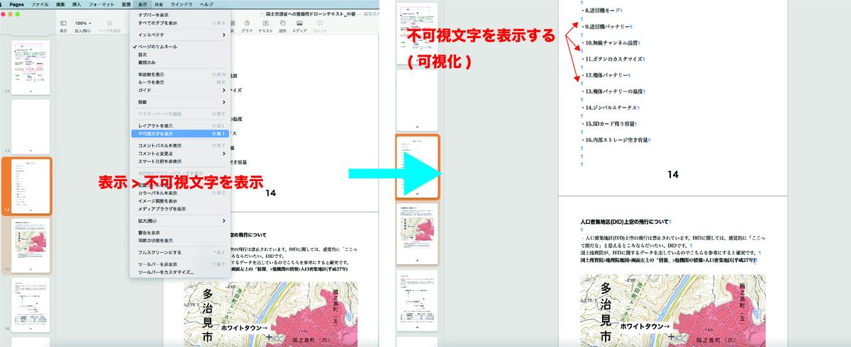 f:id:skyeye-japan:20210228105228j:plain