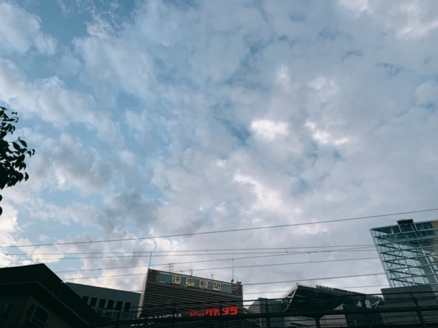 f:id:skyfrogs:20190929174841j:plain