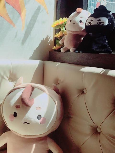 f:id:skykiroku:20180823013005j:plain
