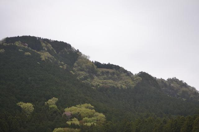 f:id:skypark:20180417162004j:image:w360