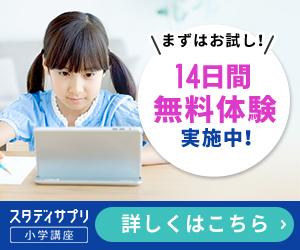 f:id:skypeikaiwa09:20200524080832j:plain