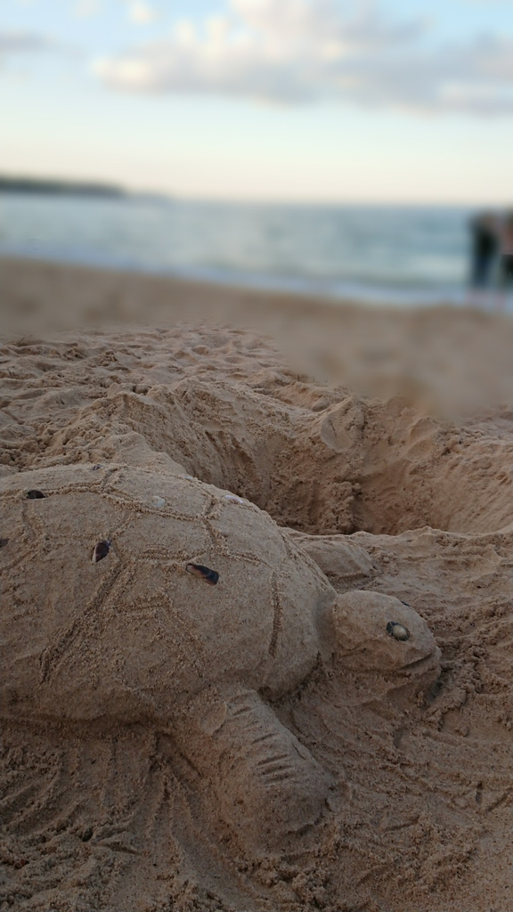 sand-art-manly-beach