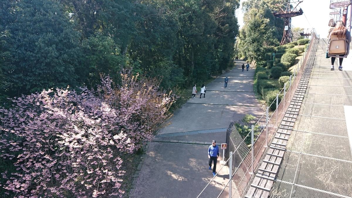 view-from-lift-matsuyama