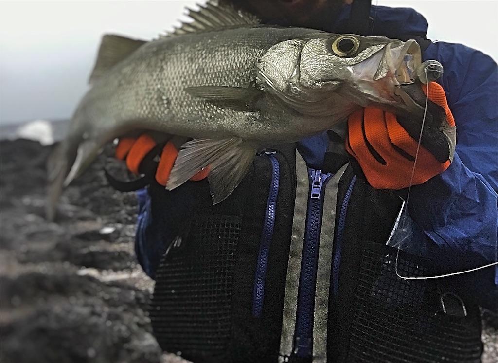 f:id:slackfish:20160905013629j:image