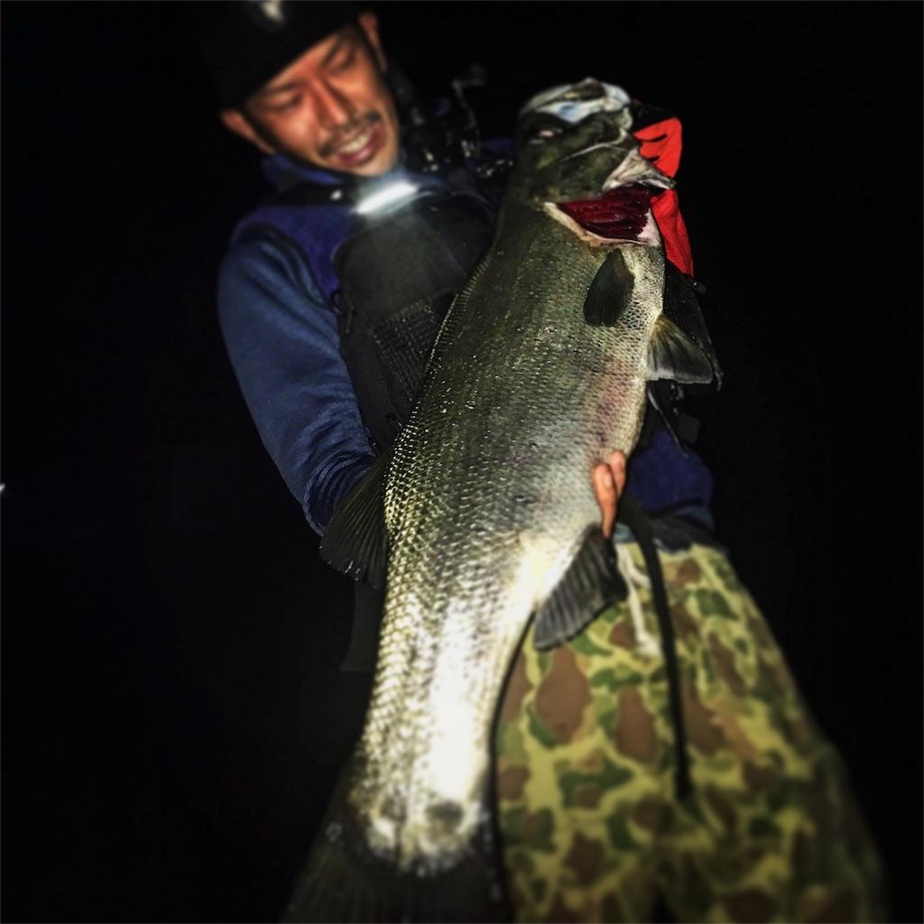 f:id:slackfish:20161101235358j:image
