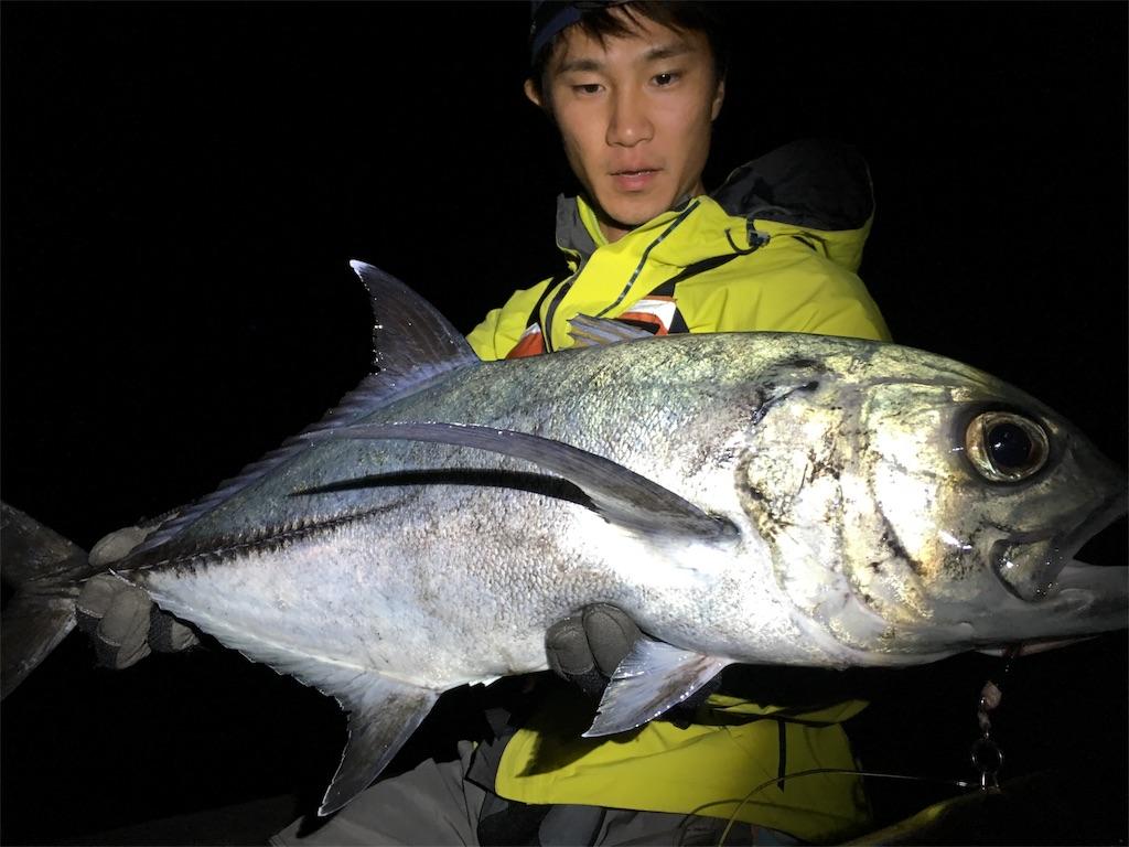 f:id:slackfish:20170620212449j:image