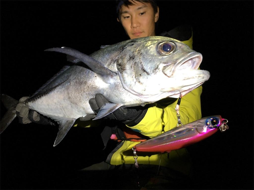 f:id:slackfish:20170620212539j:image