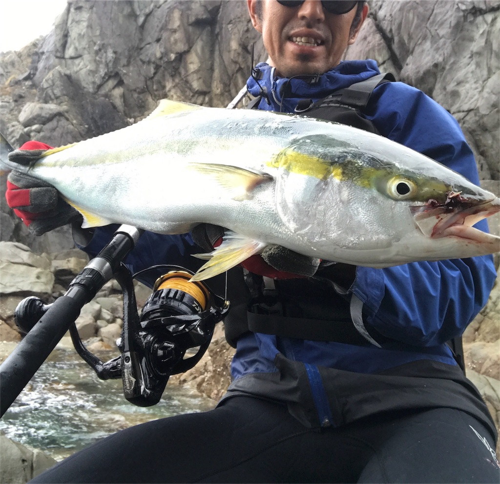 f:id:slackfish:20171105230015j:image