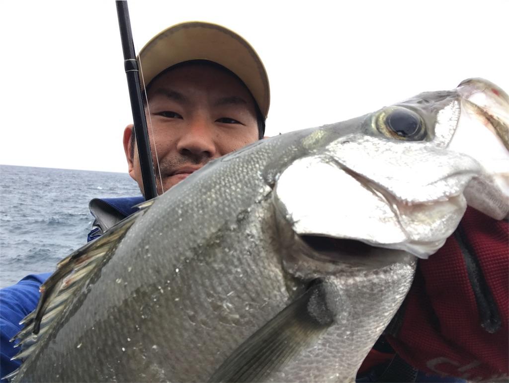 f:id:slackfish:20180108223217j:image