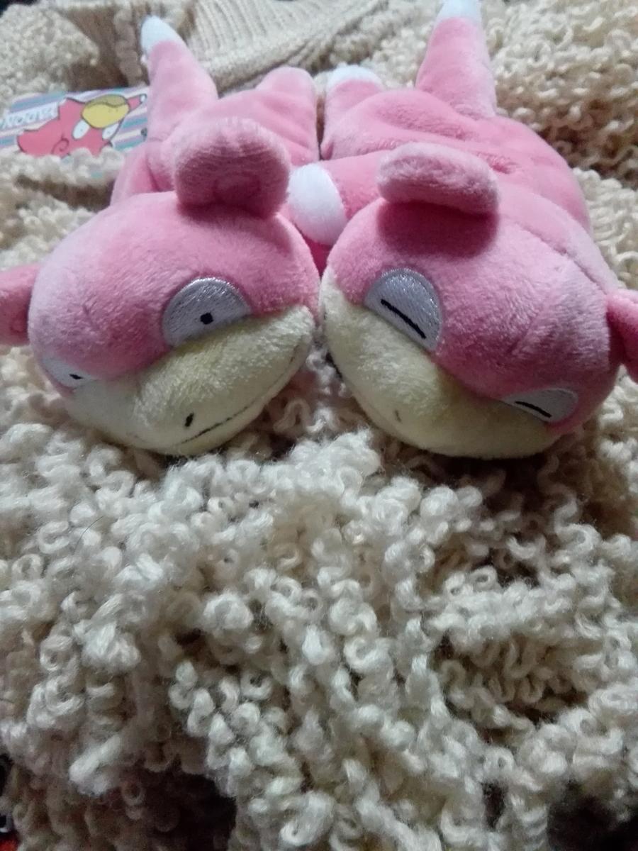 f:id:slowpoke_of_sano-family:20190502003242j:plain
