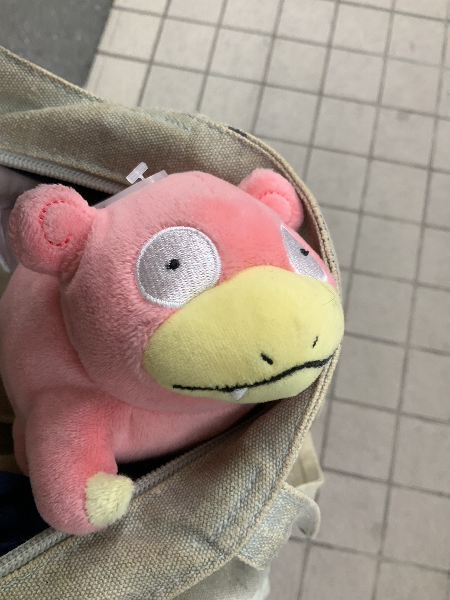f:id:slowpoke_of_sano-family:20190503134318j:plain